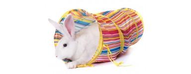 Zabawki dla gryzoni i królików